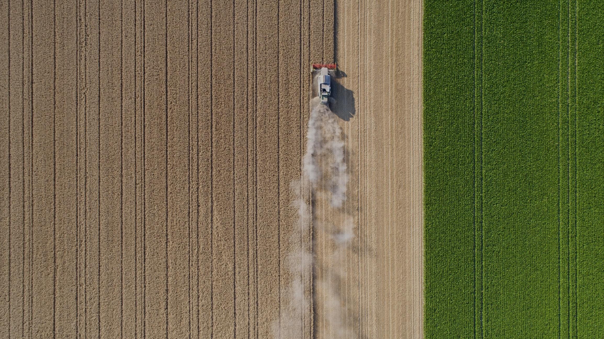 settore-aziende-agricole